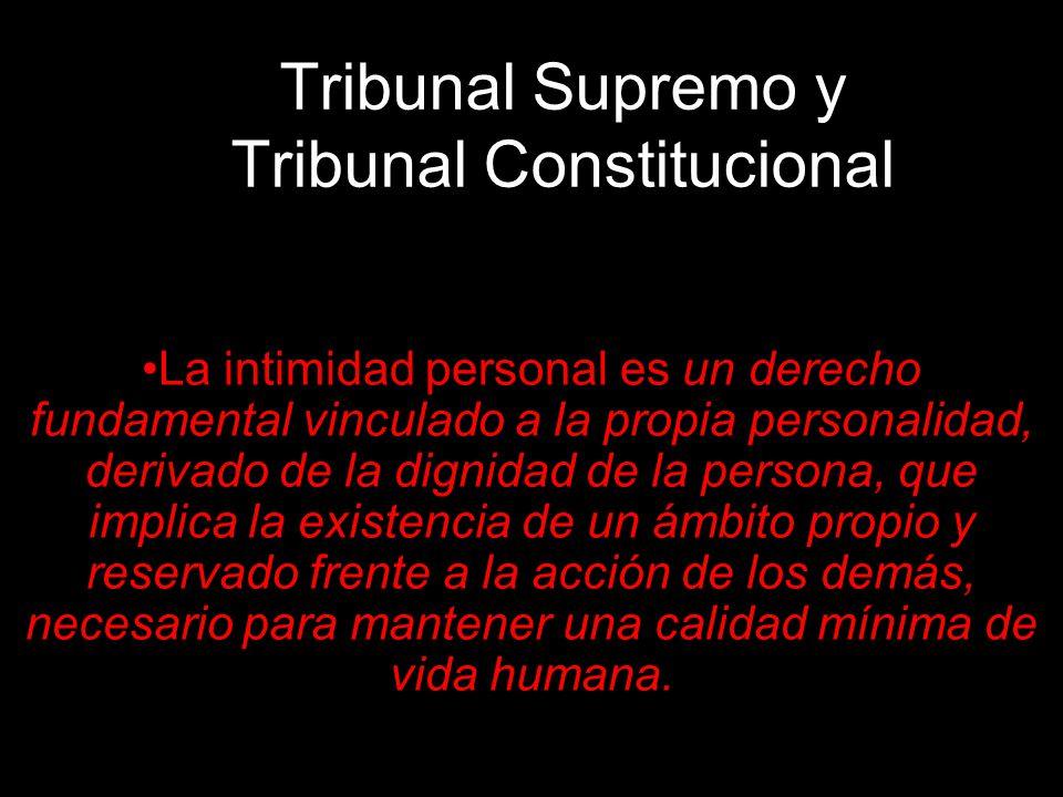Tribunal Supremo y Tribunal Constitucional