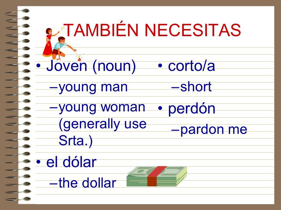 TAMBIÉN NECESITAS Joven (noun) el dólar corto/a perdón young man
