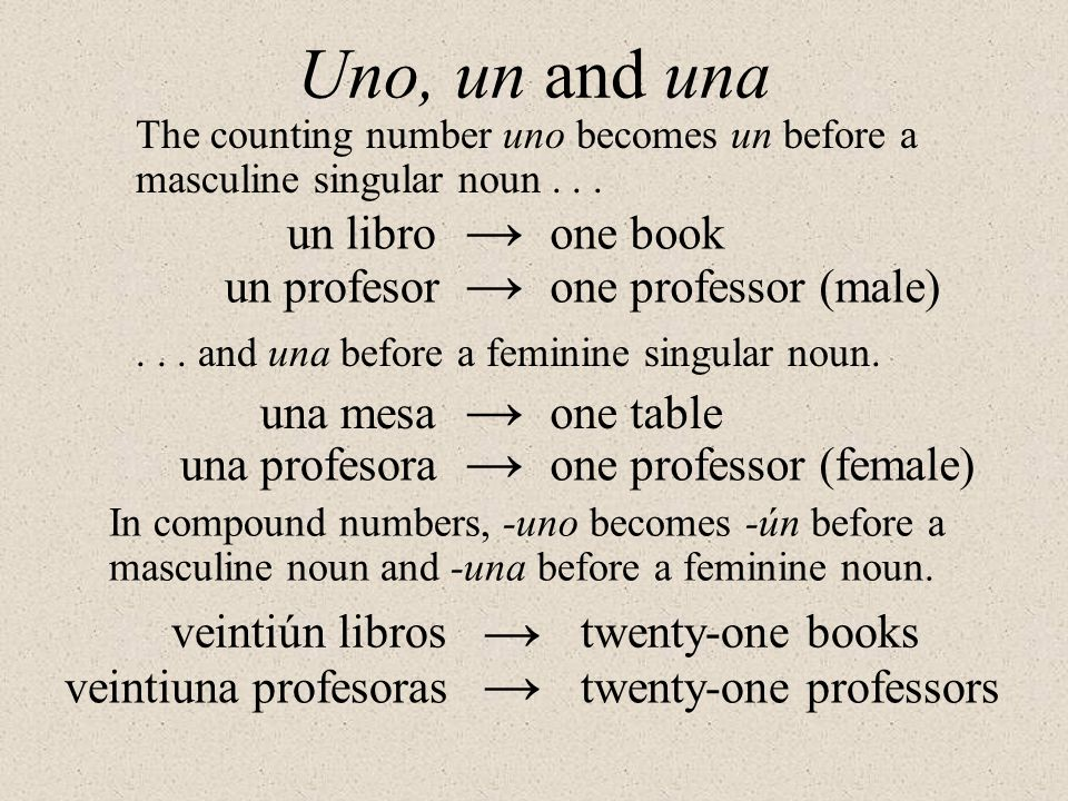Uno, un and una → → → → → → un libro one book un profesor