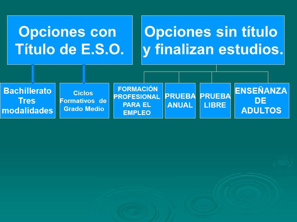 Opciones con Título de E.S.O. Opciones sin título