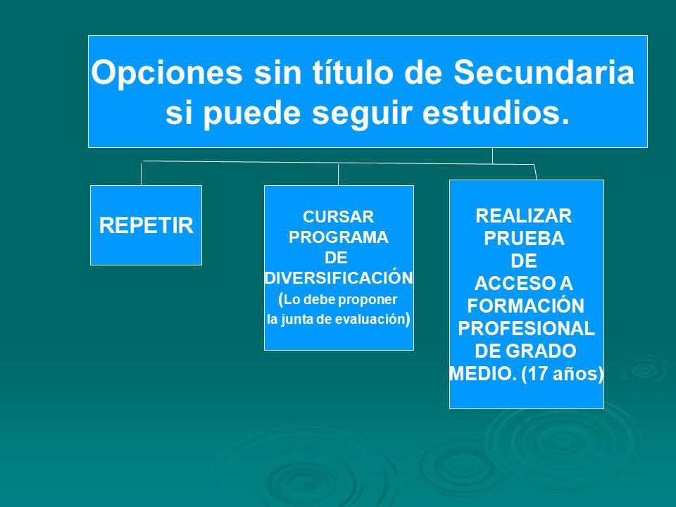 Opciones sin título de Secundaria si puede seguir estudios.