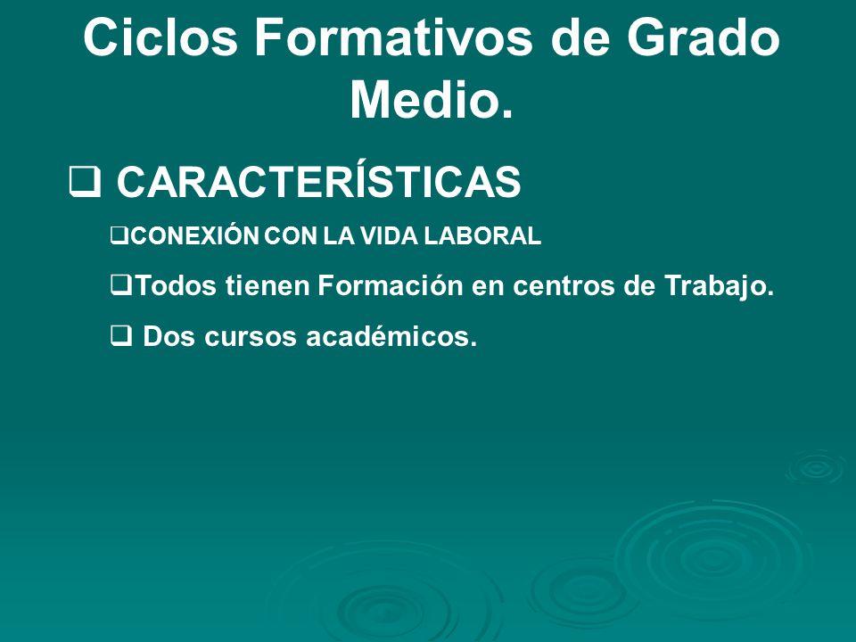Ciclos Formativos de Grado Medio.
