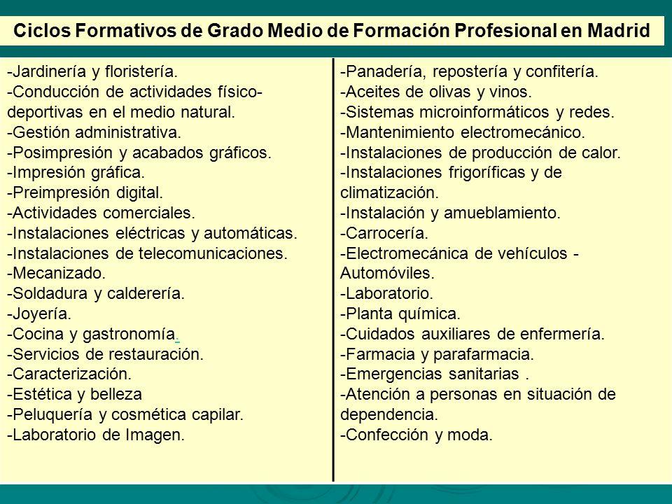 Ciclos Formativos de Grado Medio de Formación Profesional en Madrid