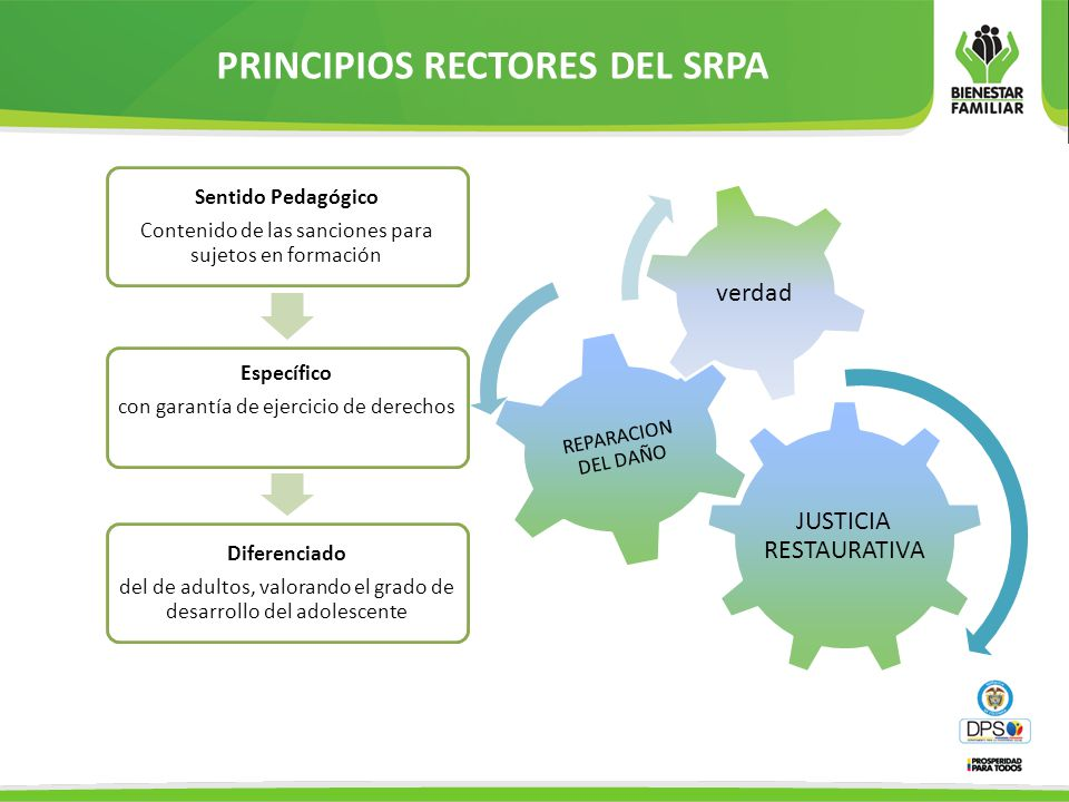 PRINCIPIOS RECTORES DEL SRPA