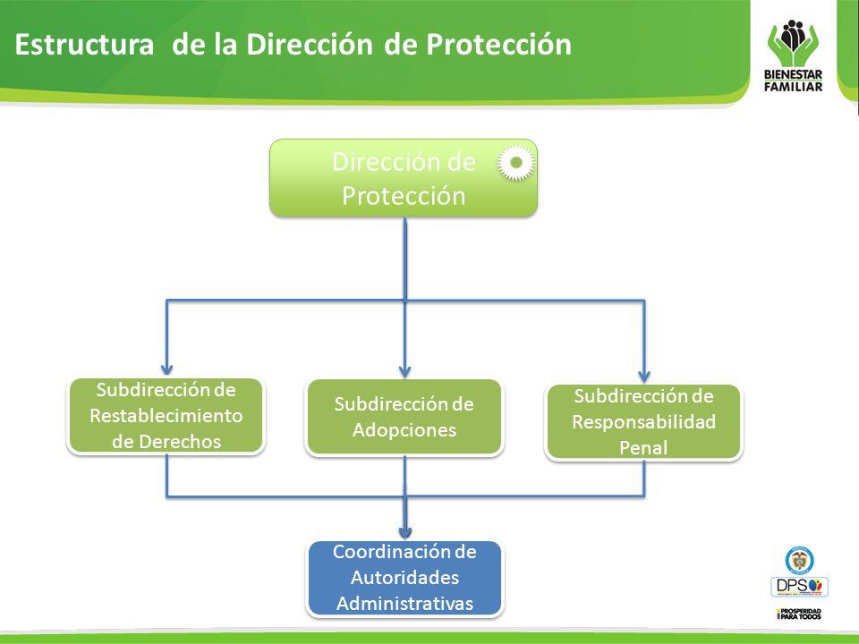 Estructura de la Dirección de Protección