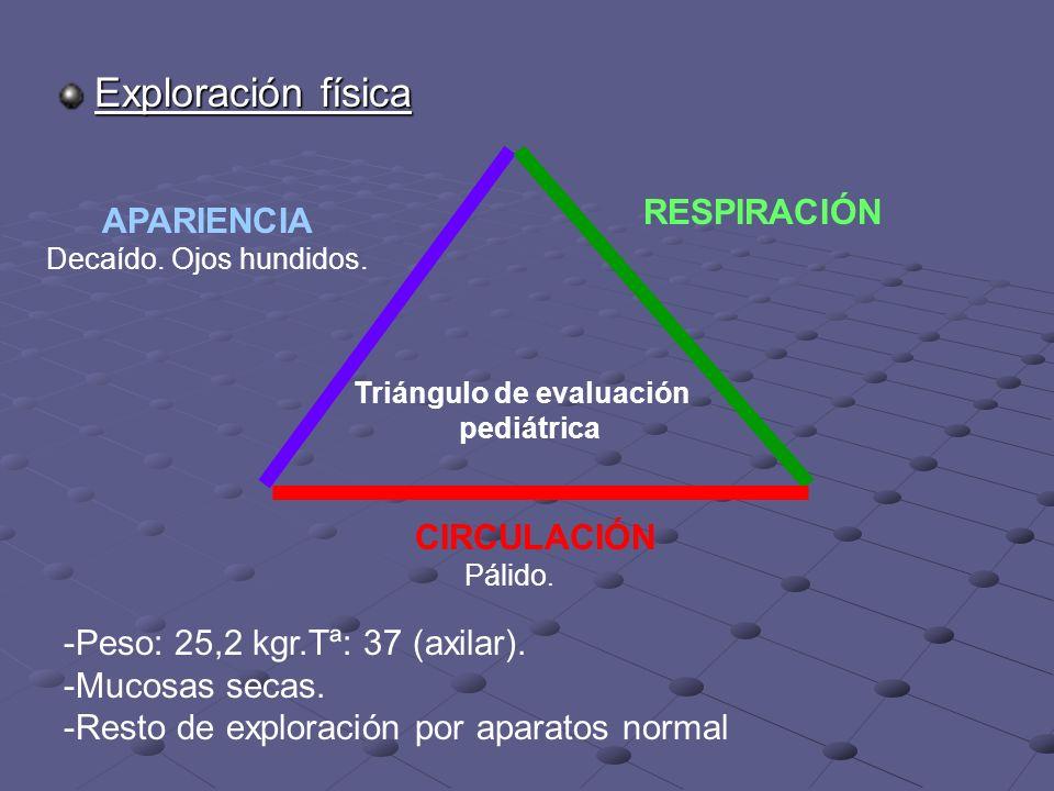 Exploración física RESPIRACIÓN CIRCULACIÓN