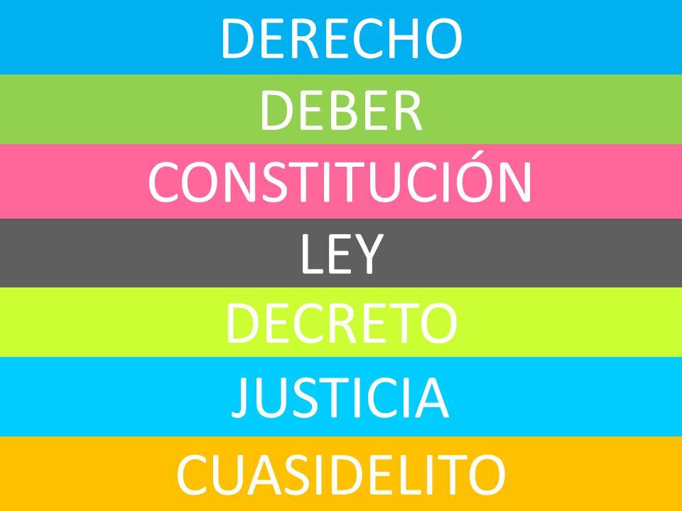 DERECHO DEBER CONSTITUCIÓN LEY DECRETO JUSTICIA CUASIDELITO