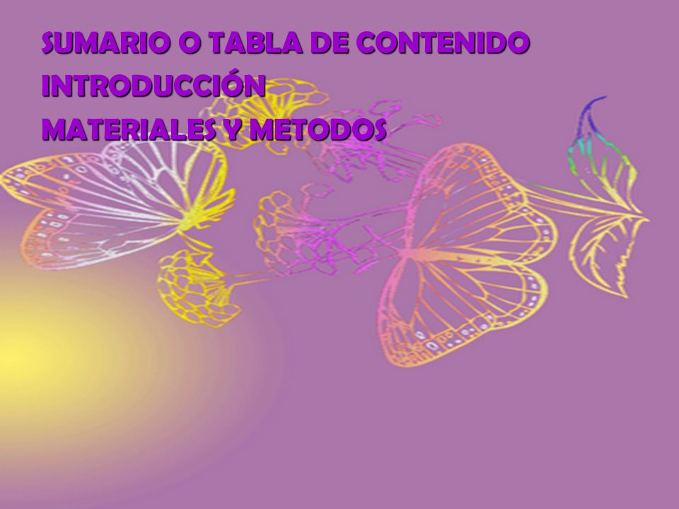 SUMARIO O TABLA DE CONTENIDO
