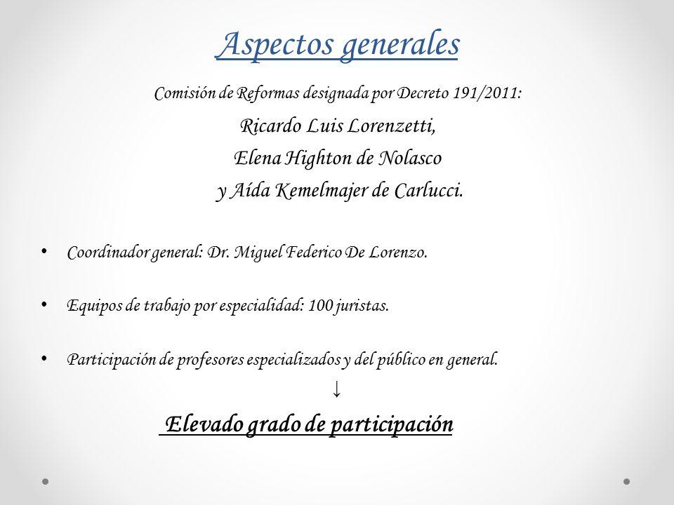 Aspectos generales Ricardo Luis Lorenzetti, Elena Highton de Nolasco