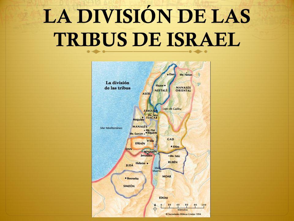 LA DIVISIÓN DE LAS TRIBUS DE ISRAEL