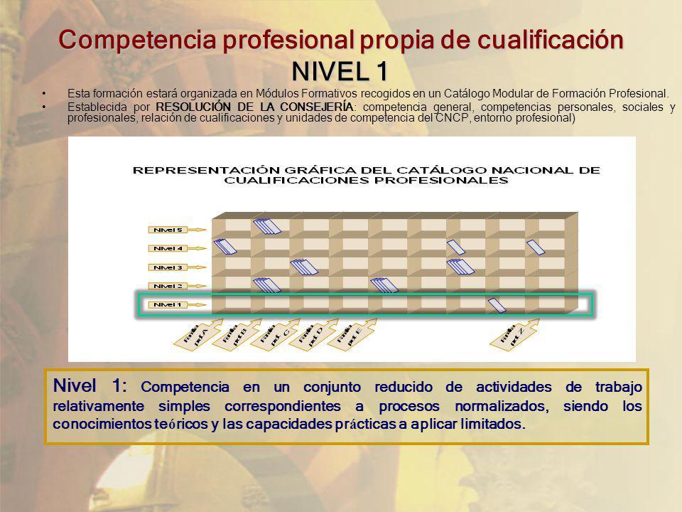 Competencia profesional propia de cualificación NIVEL 1