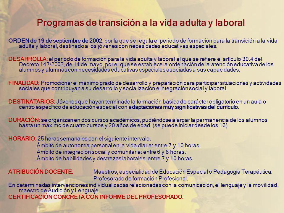 Programas de transición a la vida adulta y laboral