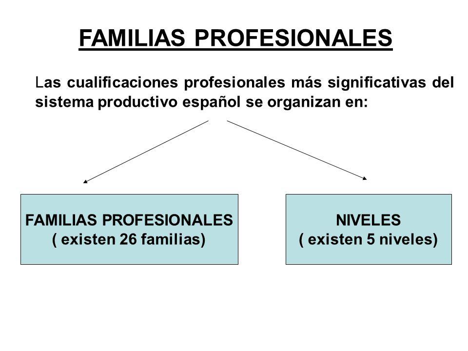 FAMILIAS PROFESIONALES FAMILIAS PROFESIONALES