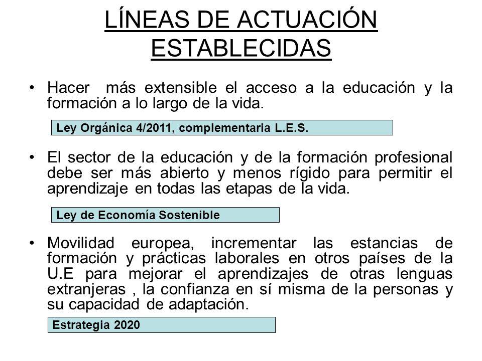 LÍNEAS DE ACTUACIÓN ESTABLECIDAS