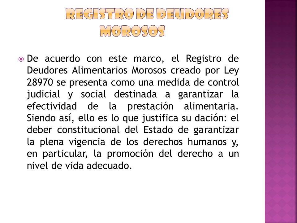 REGISTRO DE DEUDORES MOROSOS