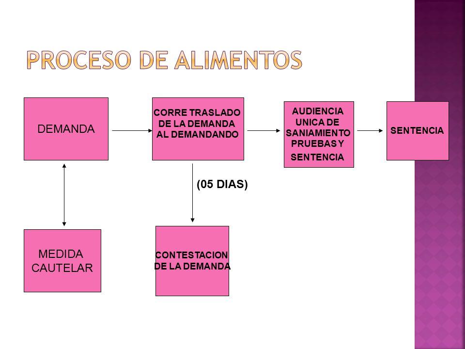 PROCESO DE ALIMENTOS DEMANDA (05 DIAS) MEDIDA CAUTELAR CORRE TRASLADO