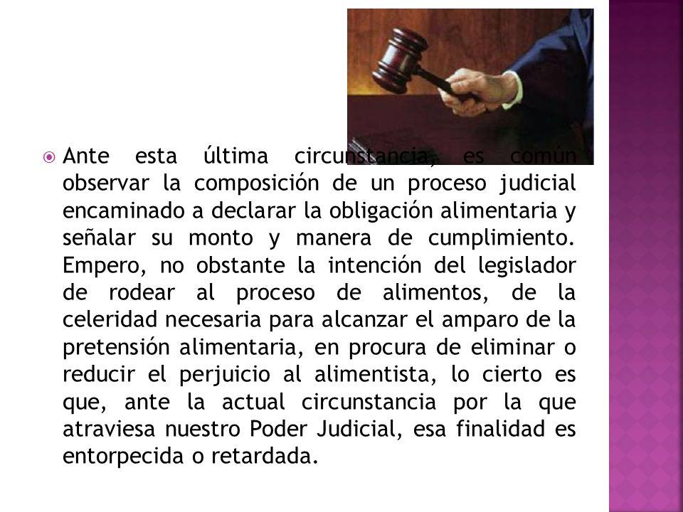 Ante esta última circunstancia, es común observar la composición de un proceso judicial encaminado a declarar la obligación alimentaria y señalar su monto y manera de cumplimiento.