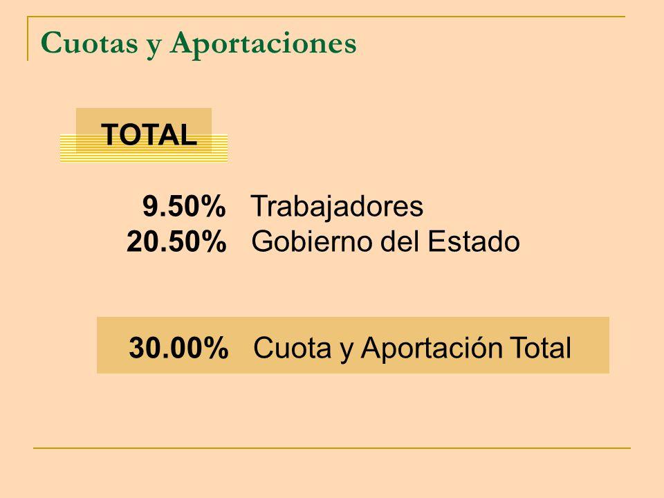 30.00% Cuota y Aportación Total