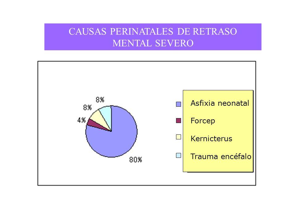 CAUSAS PERINATALES DE RETRASO MENTAL SEVERO