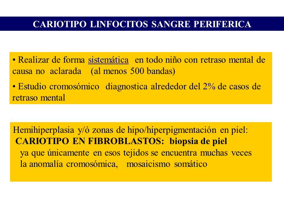 CARIOTIPO LINFOCITOS SANGRE PERIFERICA