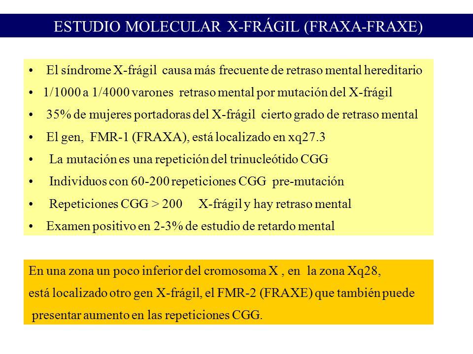 ESTUDIO MOLECULAR X-FRÁGIL (FRAXA-FRAXE)