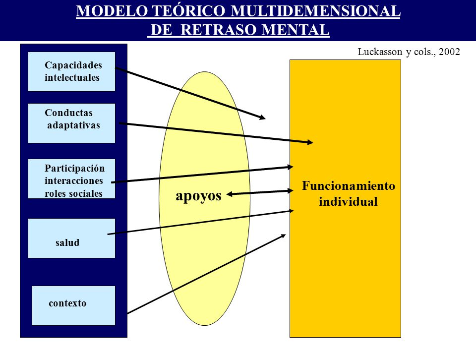 MODELO TEÓRICO MULTIDEMENSIONAL