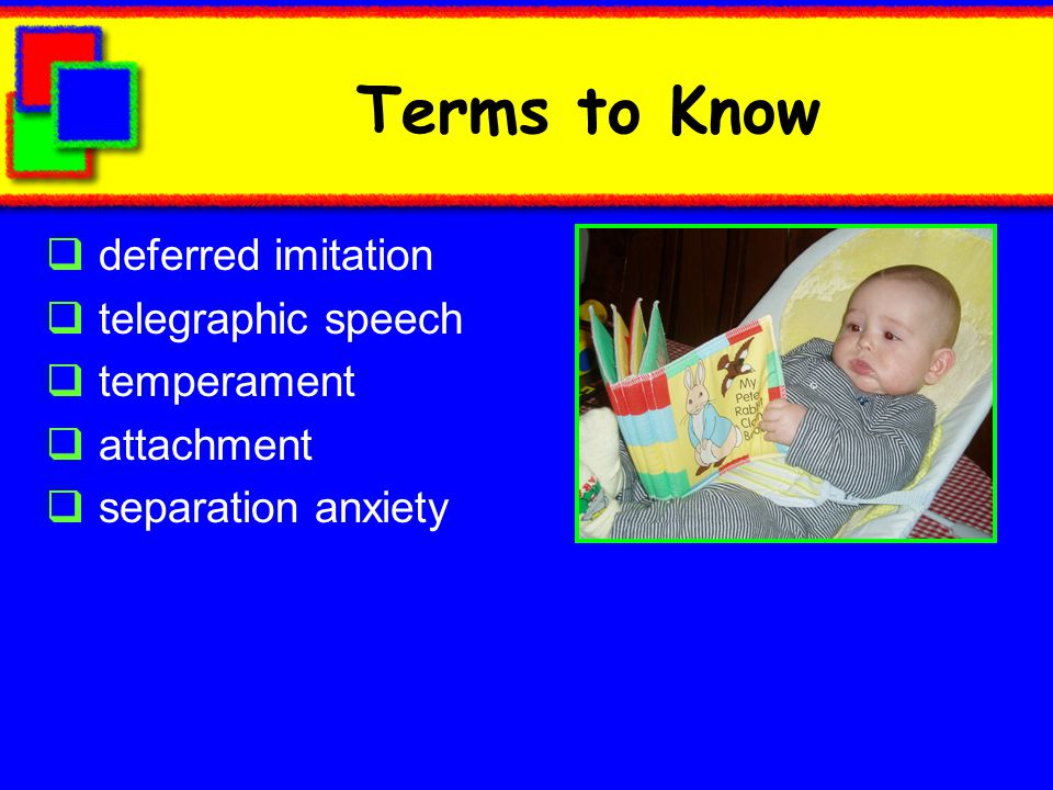 Terms to Know deferred imitation telegraphic speech temperament