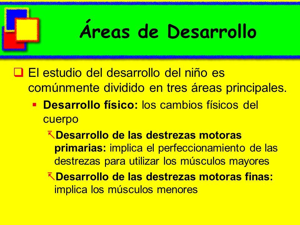 Áreas de Desarrollo El estudio del desarrollo del niño es comúnmente dividido en tres áreas principales.
