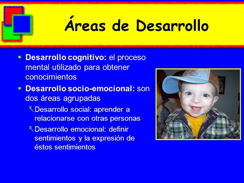 Áreas de Desarrollo Desarrollo cognitivo: el proceso mental utilizado para obtener conocimientos.