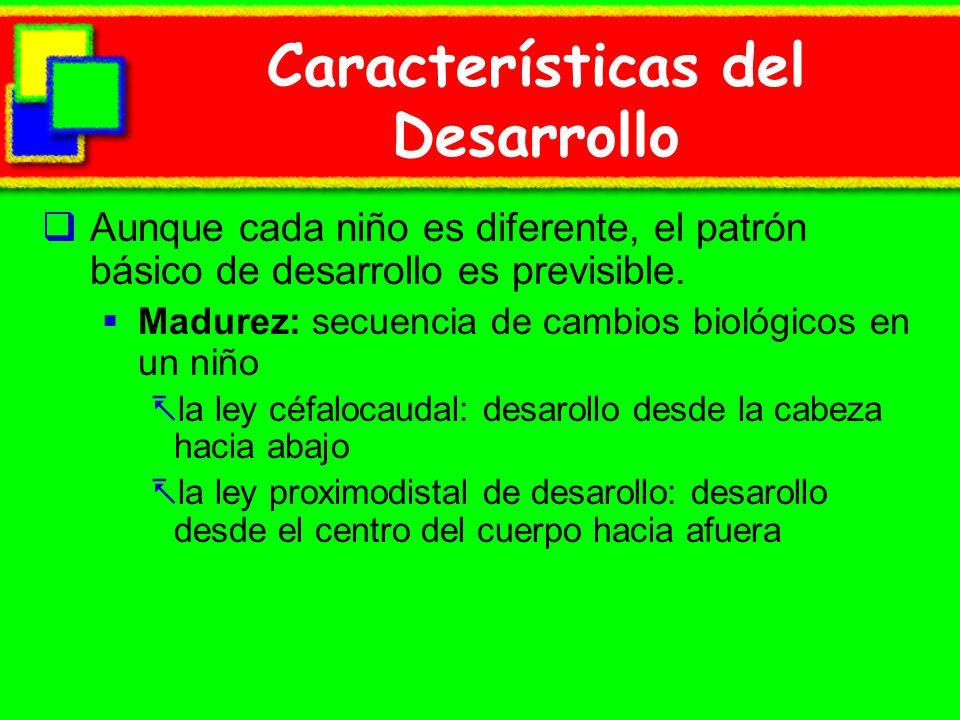 Características del Desarrollo