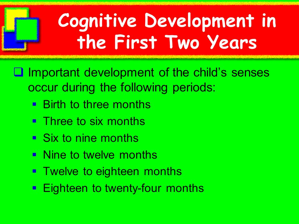 Cognitive Development in the First Two Years