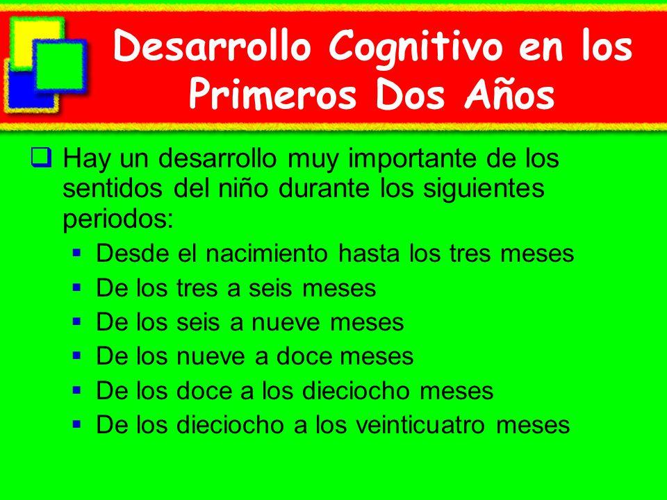 Desarrollo Cognitivo en los Primeros Dos Años