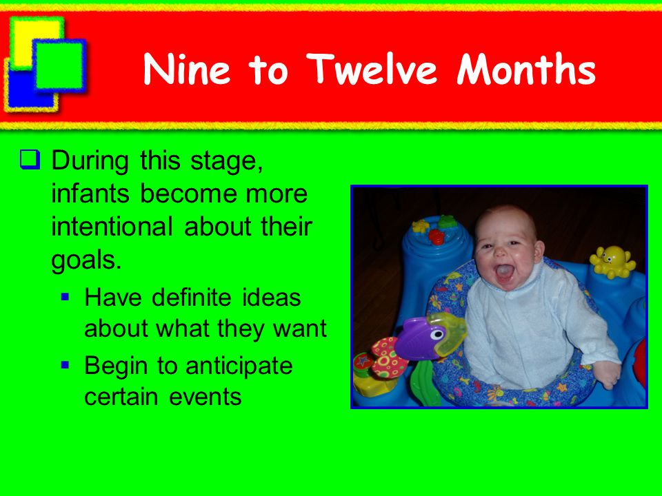 Nine to Twelve Months During this stage, infants become more intentional about their goals. Have definite ideas about what they want.