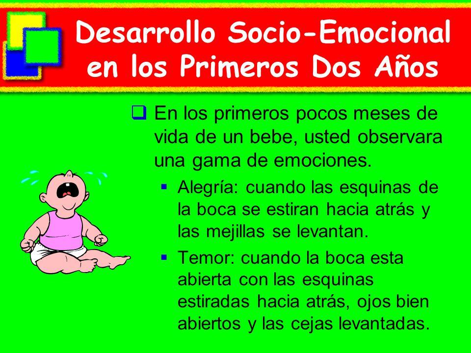 Desarrollo Socio-Emocional en los Primeros Dos Años