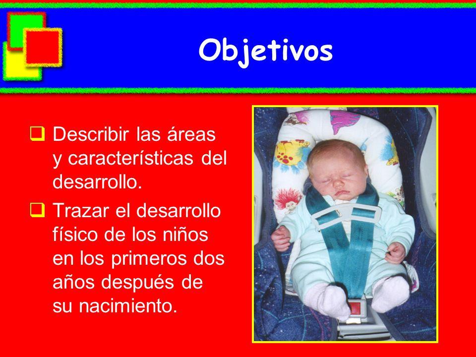 Objetivos Describir las áreas y características del desarrollo.