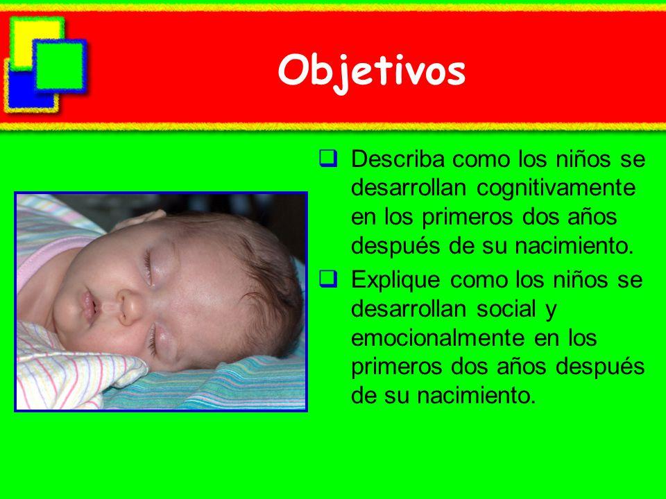 Objetivos Describa como los niños se desarrollan cognitivamente en los primeros dos años después de su nacimiento.