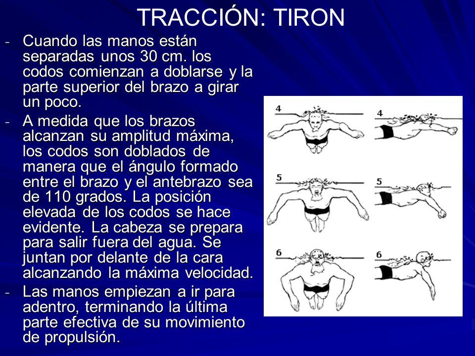 TRACCIÓN: TIRON Cuando las manos están separadas unos 30 cm. los codos comienzan a doblarse y la parte superior del brazo a girar un poco.
