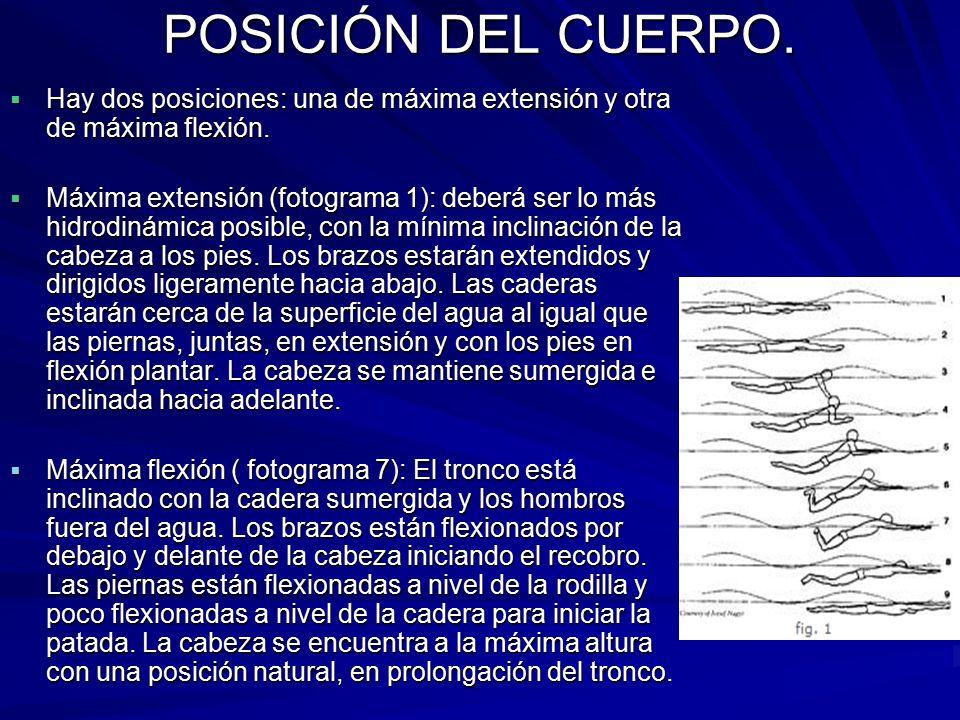 POSICIÓN DEL CUERPO. Hay dos posiciones: una de máxima extensión y otra de máxima flexión.