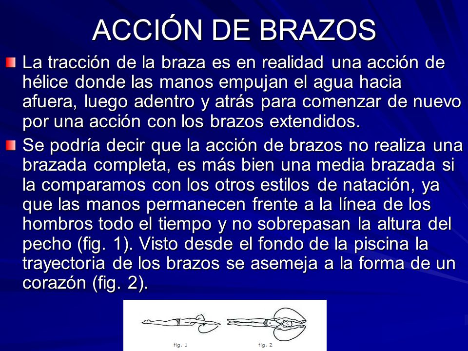 ACCIÓN DE BRAZOS