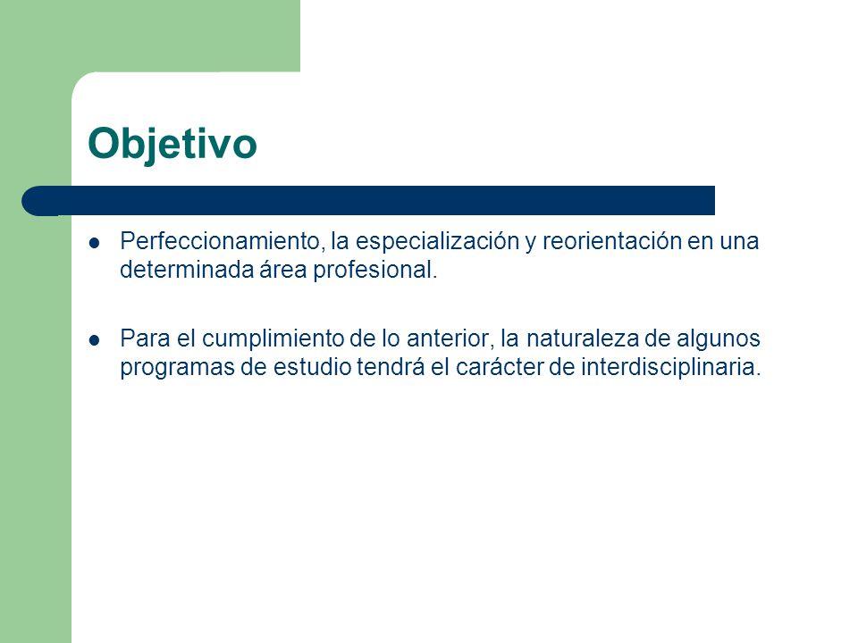 Objetivo Perfeccionamiento, la especialización y reorientación en una determinada área profesional.
