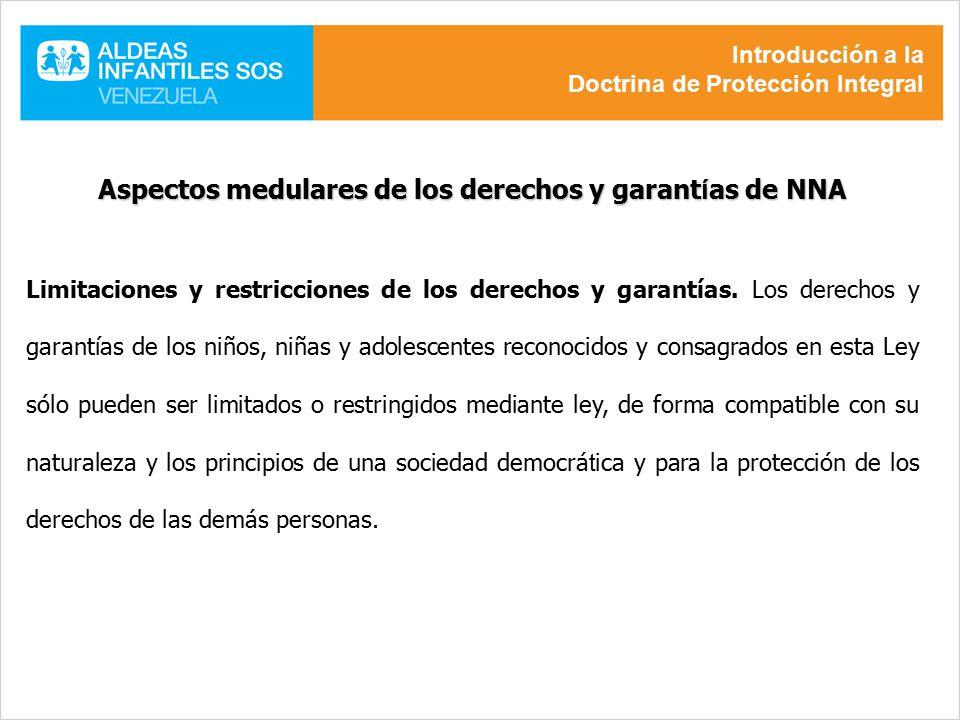 Aspectos medulares de los derechos y garantías de NNA