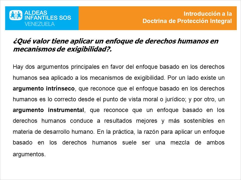 Introducción a la Doctrina de Protección Integral. ¿Qué valor tiene aplicar un enfoque de derechos humanos en mecanismos de exigibilidad .