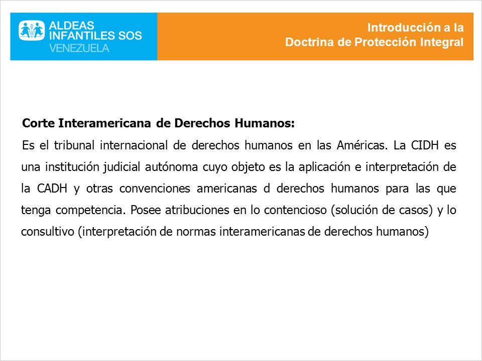 Introducción a la Doctrina de Protección Integral. Corte Interamericana de Derechos Humanos: