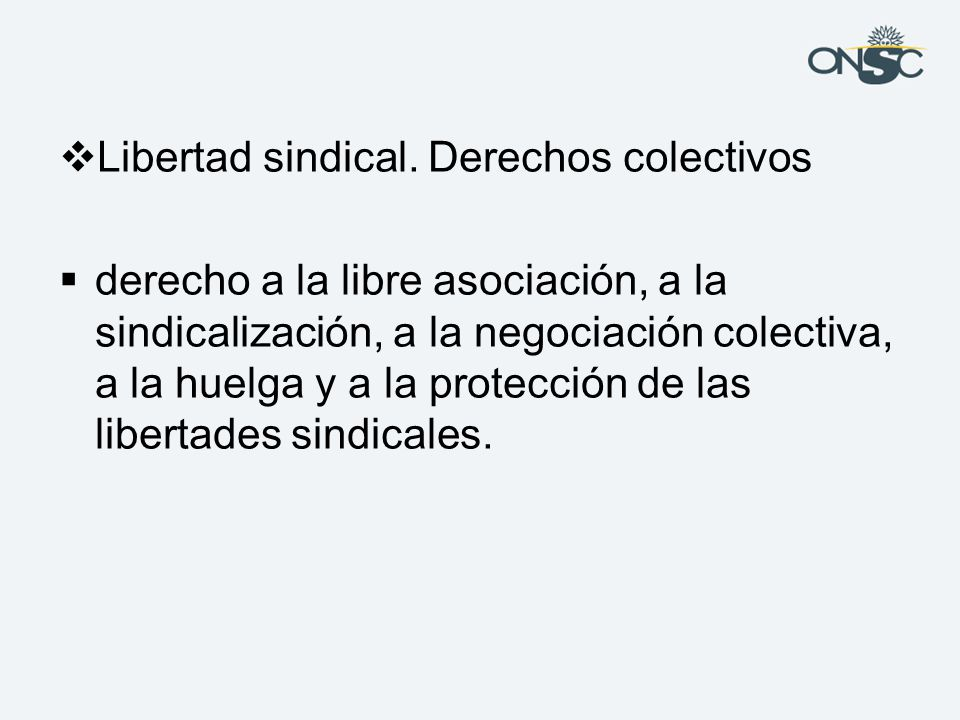 Libertad sindical. Derechos colectivos