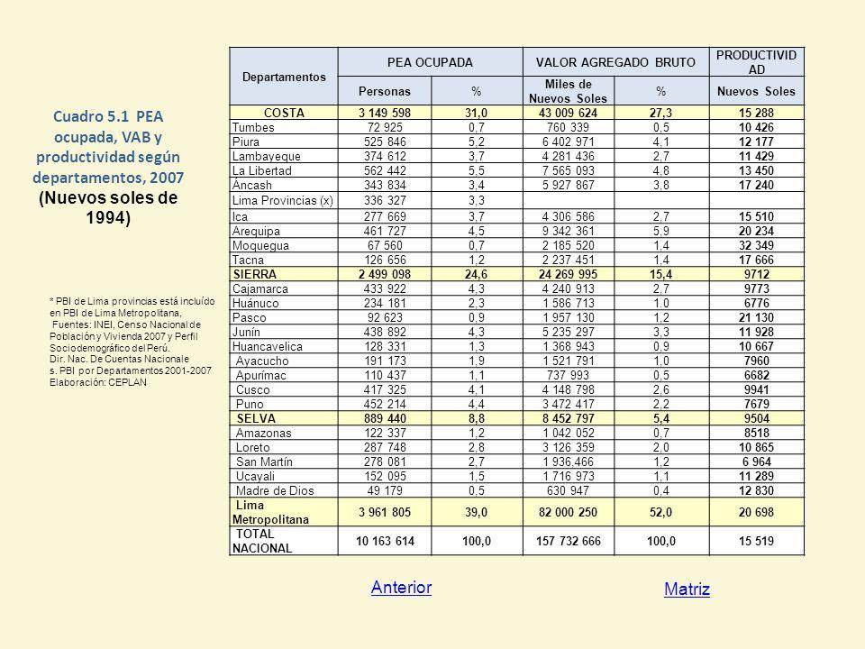 Cuadro 5.1 PEA ocupada, VAB y productividad según departamentos, 2007