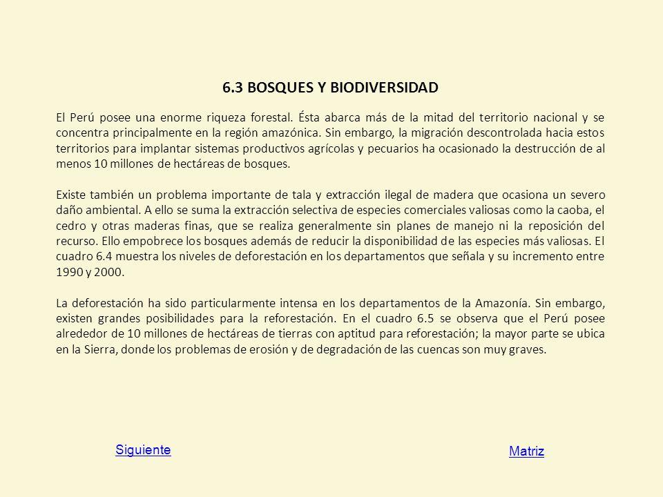 6.3 BOSQUES Y BIODIVERSIDAD