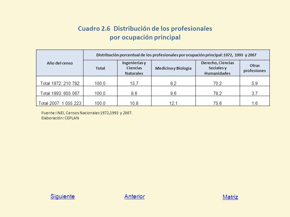 Cuadro 2.6 Distribución de los profesionales por ocupación principal
