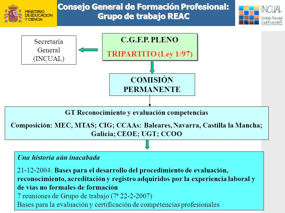 Consejo General de Formación Profesional: Grupo de trabajo REAC