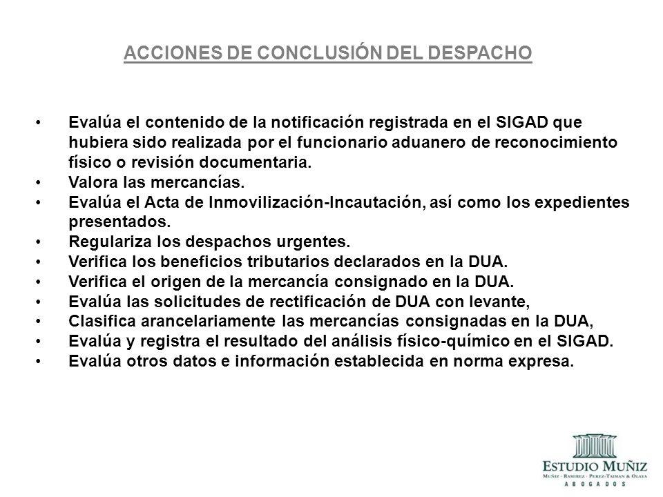 ACCIONES DE CONCLUSIÓN DEL DESPACHO