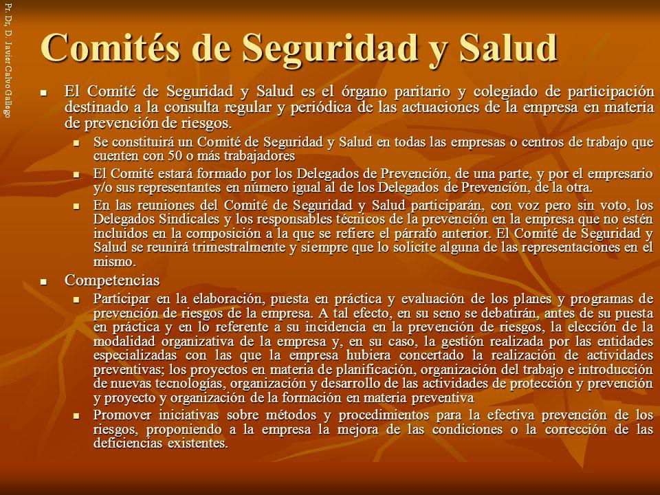Comités de Seguridad y Salud